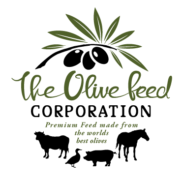 Olive Feed Corporation